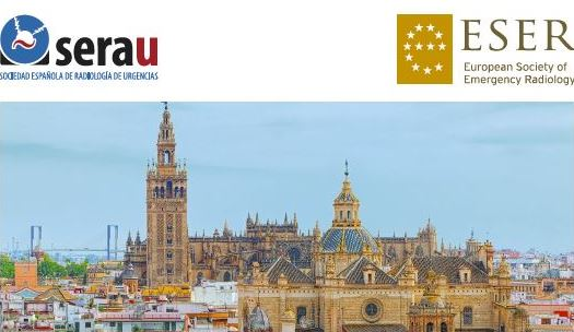 AI in emergency radiology: the SERAU-ESER 2019 Joint Meeting in Seville, Spain