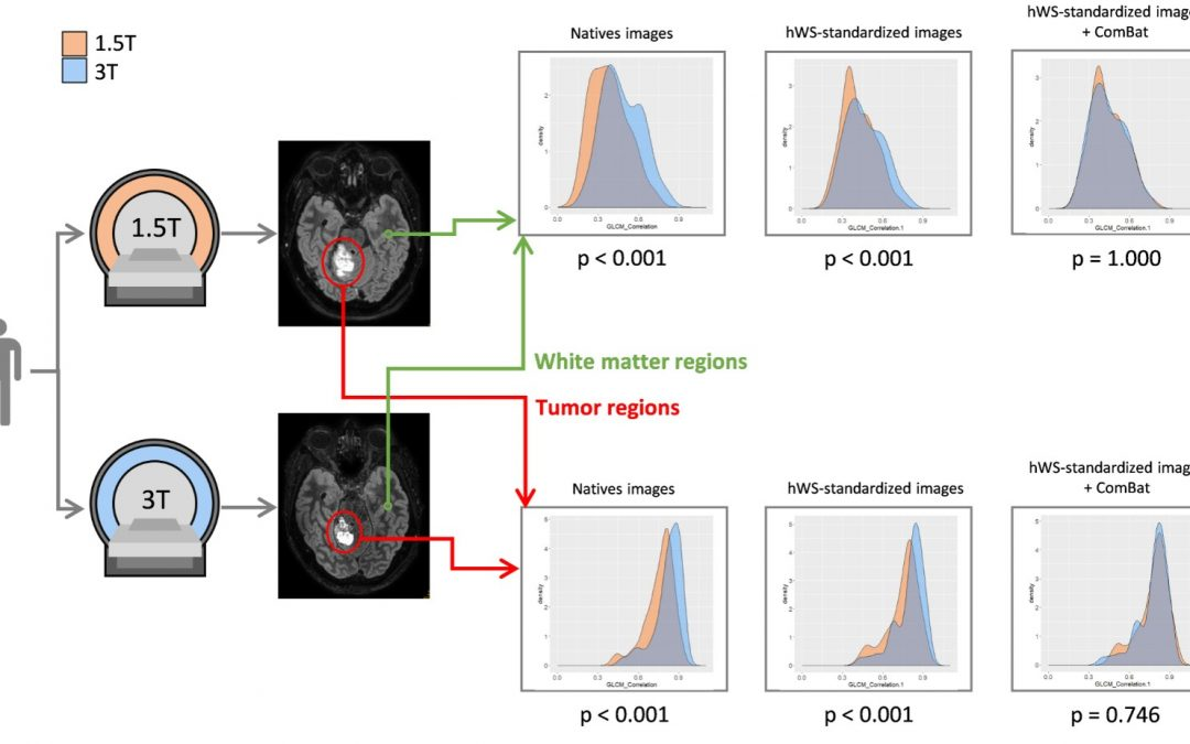 How can we combat multicenter variability in MR radiomics? Validation of a correction procedure