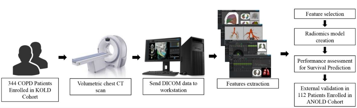 Radiomics approach for survival prediction in chronic obstructive pulmonary disease