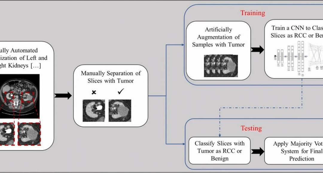 Automated classification of solid renal masses on contrast-enhanced computed tomography images using convolutional neural network with decision fusion