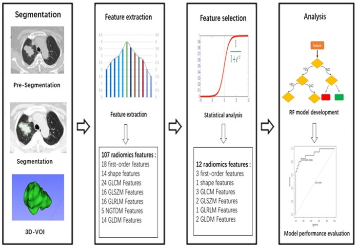 CT-based radiomics and machine learning to predict spread through air space in lung adenocarcinoma