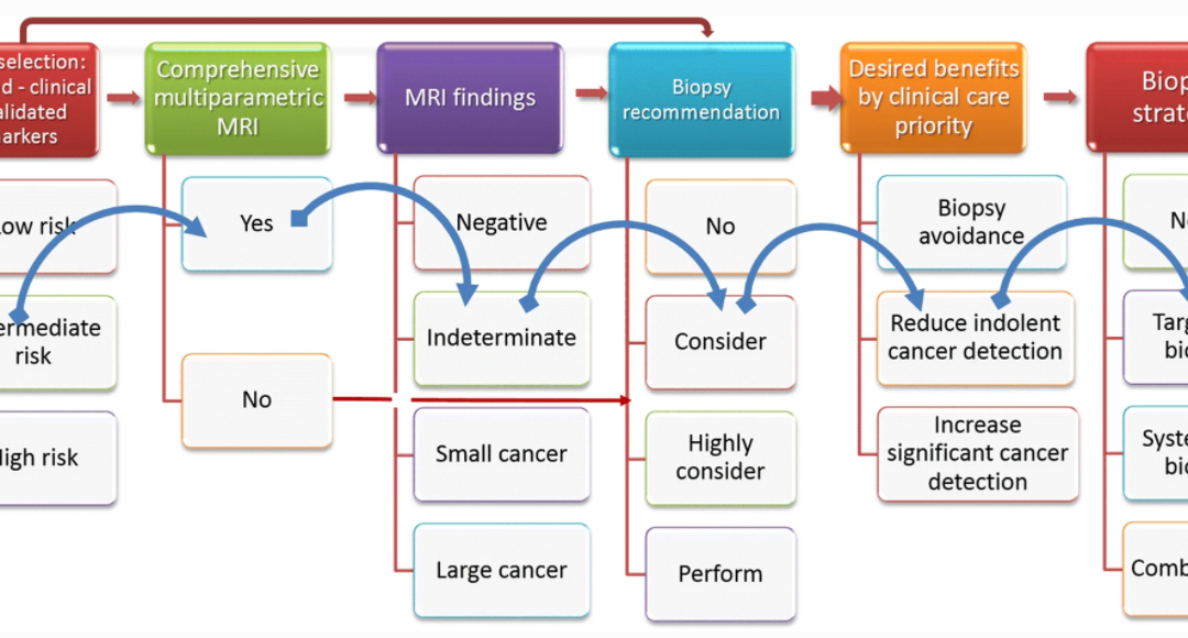 ESUR/ESUI position paper: developing artificial intelligence for precision diagnosis of prostate cancer using magnetic resonance imaging