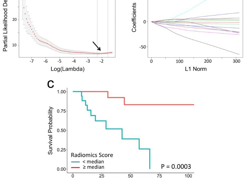 Can radiomics improve the prediction of metastatic relapse of myxoid/round cell liposarcomas?