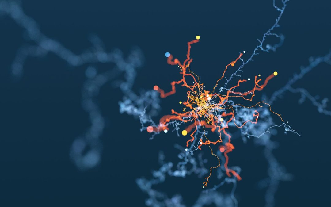 Algorithms: All Set to Shape Tomorrow's Medicine